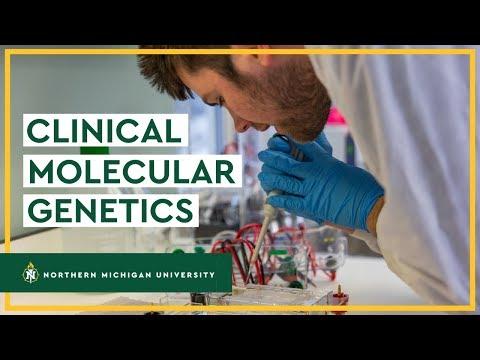Clinical Molecular Genetics 🔬