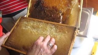 training in beekeeping