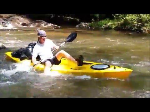 Coiled Cobra - Dan River - Stokes County NC