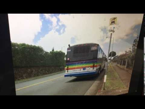 TheBus Honolulu 2002 Gillig Phantom 40' #848 Route 73 Picture