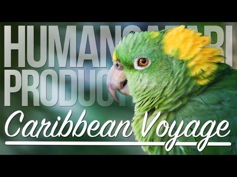 Caribbean Voyage