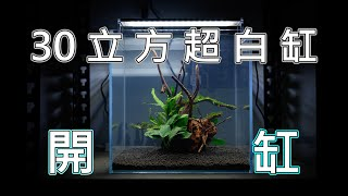 新設魚缸 | 30立方超白缸 | 幫鬥哥開一個新家 | betta fish tank setup | nanocube fish tank set up | 4K video