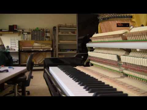 Niendorf Piano Manufaktur
