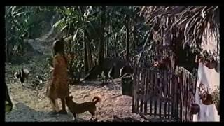 Cine Colombiano Pisingaña 1985