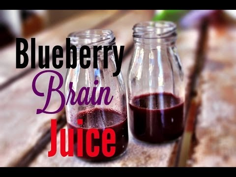 how-to-make-blueberry-brain-juice.-the-blue-bayou-by-world-cookbook-award-winner-bridget-davis-⭐⭐⭐⭐⭐