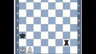 Уроки шахмат - Ладья против слона (коня)