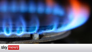 Govt preparing for 'worst-case scenario' of gas costs staying high