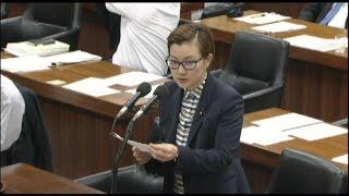 2015.6.3 衆院内閣委員会 池内さおり議員の質問.