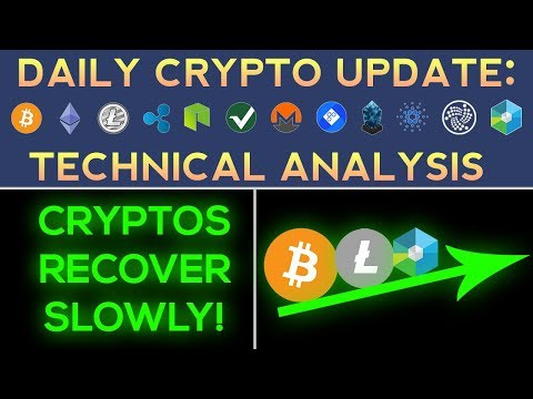 Cryptocurrencies Recover Slowly! (1/19/18) Daily Update + Technical Analysis