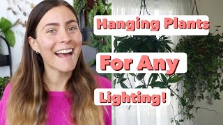 Low Light Hanging Plants! | Hanging Houseplants For All Home Lighting!