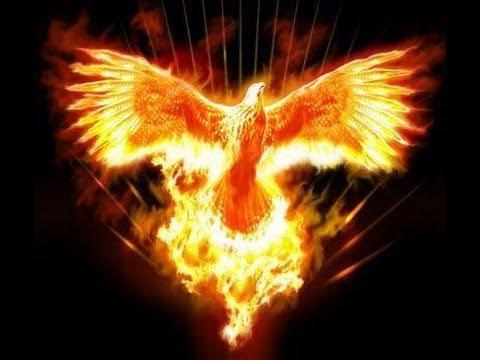 Image result for phoenix epic