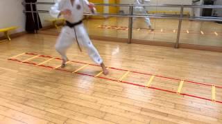 Karate ladder training part 2