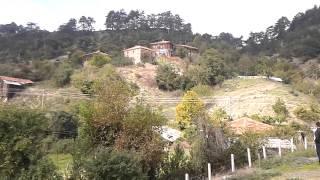 sinop dikmen büyükdağ köyü bayram şenliği