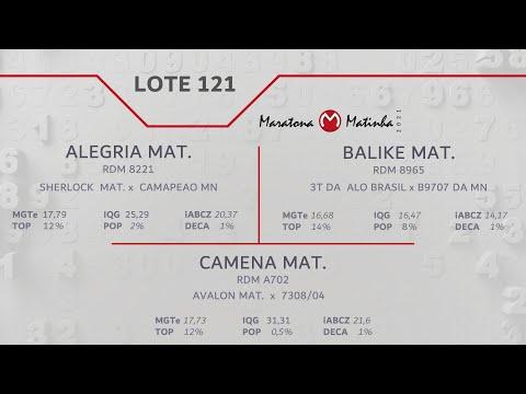 LOTE 121 Maratona Matinha