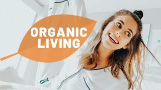 17 Ways To Make Your Home More Organic, Sustainable & Eco-Friendly   Lucie Fink