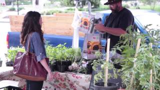 Using your benefits at farmers' markets in Ohio!