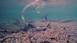 La Méditerranée, mer de plastique