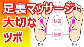 ためしてガッテン・足裏【番外編】シリーズ ~6つの『ガッテン!』で足...