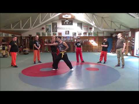 Grandmaster Walter Toch Chinese selfdefense on Du Mai Meridian