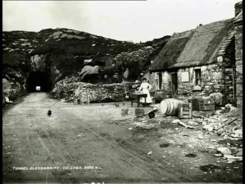 Molly Gallivan's Cottage & Traditional Farm