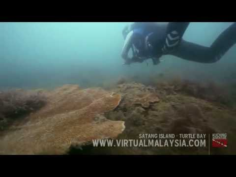 Satang Island - Turtle Bay | Kuching Adventure Dive (FullHD)