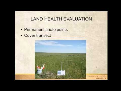 Pasture Lease Agreements for Livestock | WYO RangeCast