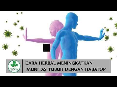 cara-meningkatkan-imunitas-tubuh-secara-alami-dengan-habatop