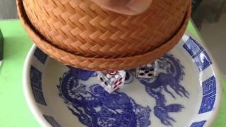 Repeat youtube video กล่องจับเสียงไฮโล ช้างวัดดวงไม่สู้081-8620264