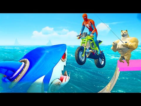 Fishing Shark Challenge - Spider Man Doge Motorcycle Racing Competition |