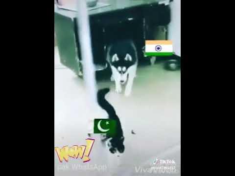 Ungli Mat Uthana Bazo Tor Ke Rakh De Ga