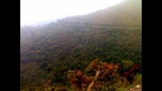 Indian Classical Music-Vedang Dharashive- Divine Sounds.