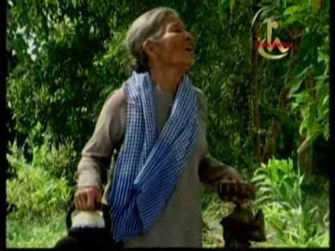 Giot mo hoi cua me  - Dan Truong
