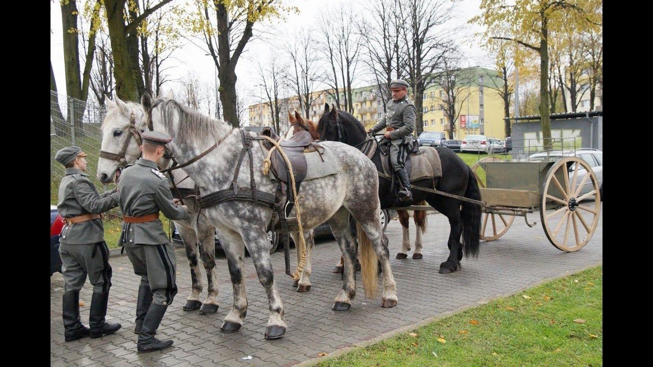 Defilada i piknik historyczny 11 listopada w Głogowie