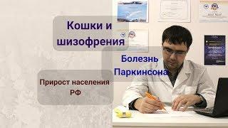 Кошки и шизофрения, эпидемия болезни Паркинсона и прирост населения в РФ. Новости медицины