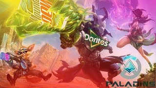 PALADINS AND THE MEMES OF THE REALM