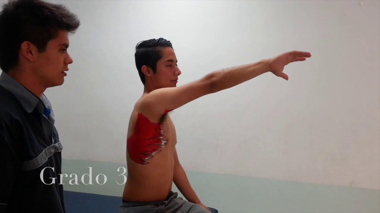 Valoración muscular de miembro superior - YouTube
