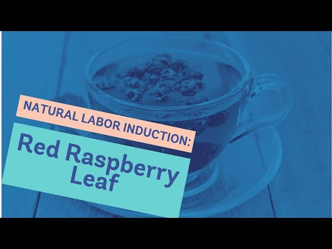 Red Raspberry Leaf during Pregnancy to Induce Labor