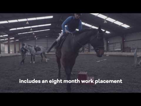 Equine Science LM180  - University of Limerick