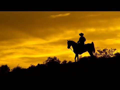 Las Vegas - Wild West Sunset Horseback Ride With Dinner
