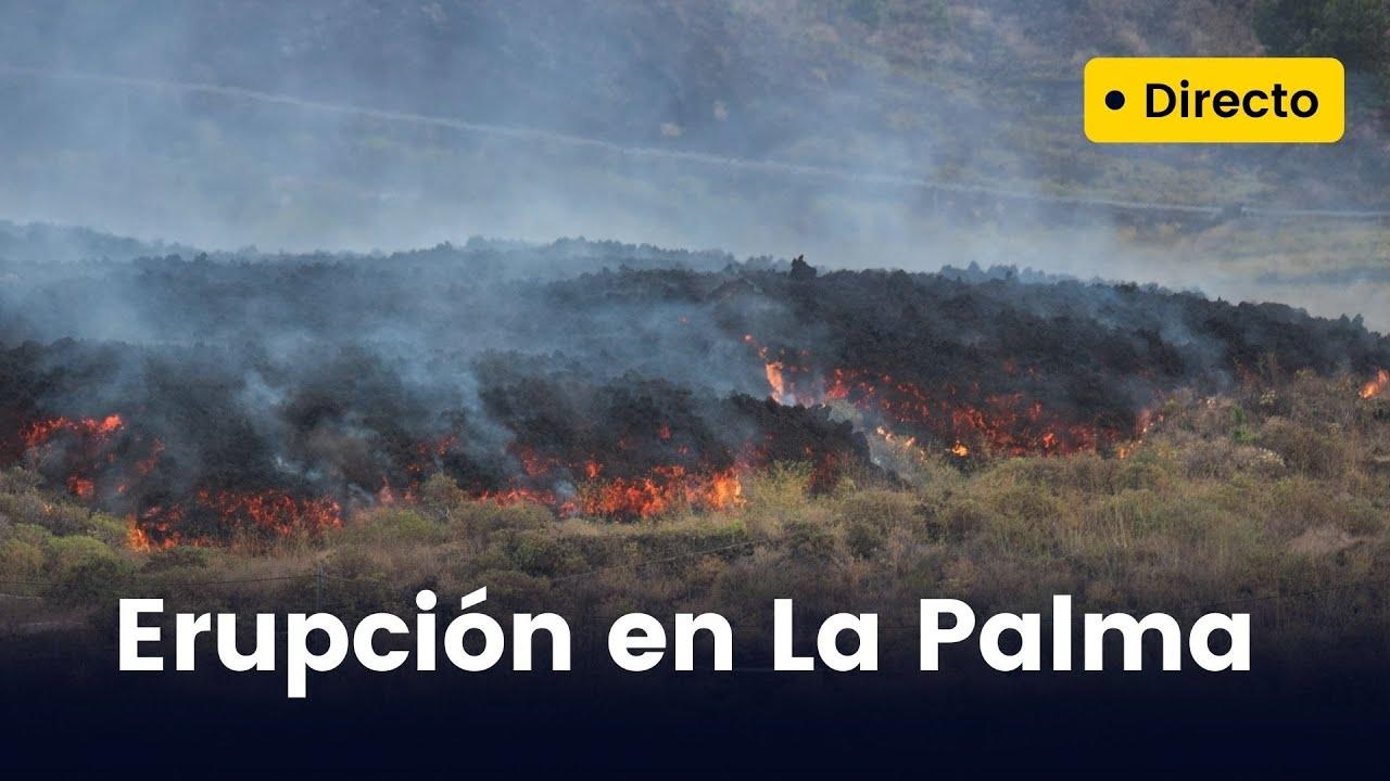 Download 🔴 DIRECTO   La lava del volcán de La Palma llega al mar