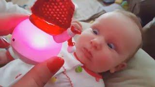 Christmas Babies Funny Fails 2020 - Funniest Home Videos