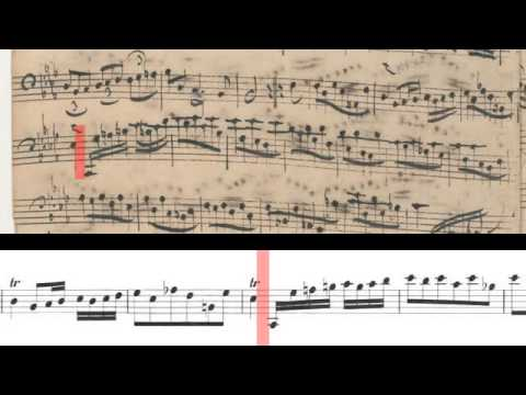 BWV 1010 - Cello Suite No.4 (Scrolling)
