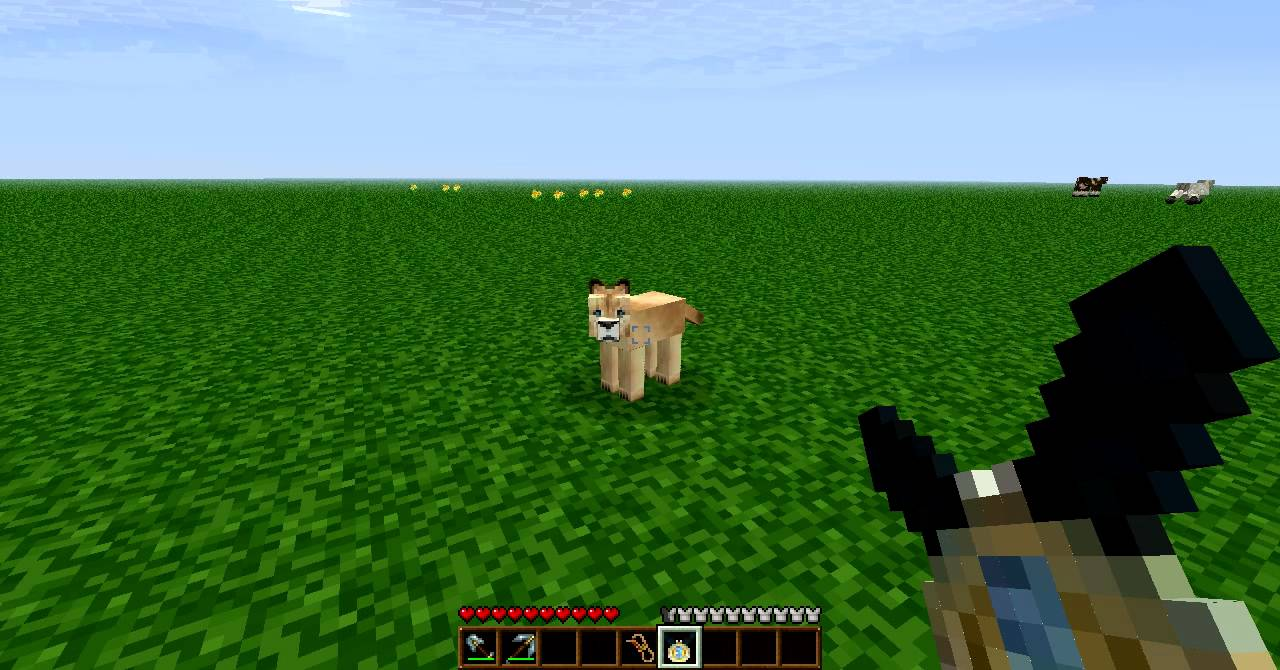 Minecraft Mo Creatures How To Tame Big Cats