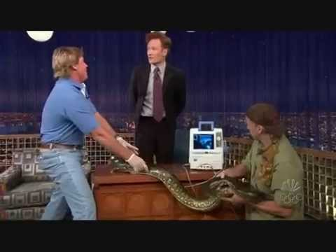 "Thumbnail: Steve Irwin on ""Late Night with Conan O'Brien"" - 11/10/05"