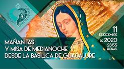 Desde-la-fe-Ma-anitas-a-la-Virgen-de-Guadalupe-y-Misa-de-medianoche-desde-la-Bas-lica-2020