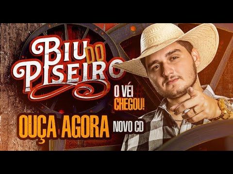Biu Do Piseiro Marco 2020 Musicas Novas Repertorio Novo Cd Ao