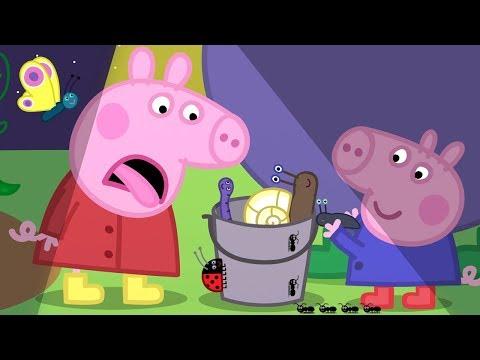 Świnka Peppa zbiera nocne zwięrzęta | Zabawa na placu zabaw