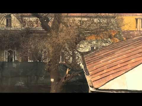 VIDEO Interventie La Salcam Cu Excavatorul La Iasi