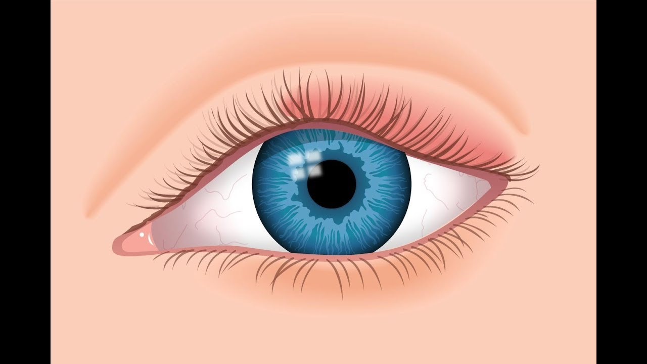 Swollen eyelids: Causes and treatment