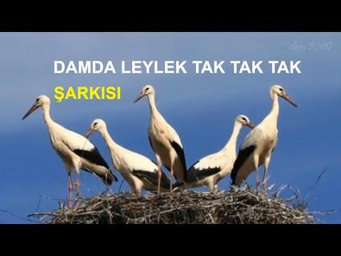 DAMDA LEYLEK / Çocuk Şarkıları (Altyazılı)